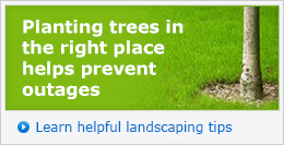Planting trees in the right place helps prevent outages. Learn helpful landscaping tips »