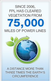 Since 2006, FPL has cleared vegetation from 75,000 miles of power lines - a distance more than three times the earth's circumference